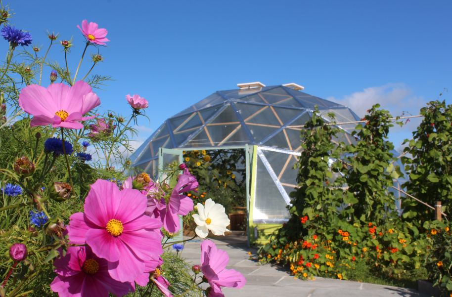 GIY GROW COOK EAT episode 5 workplace growing and wellbeing at voxpro geodome